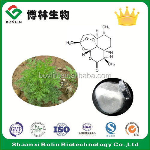 Best Selling Artemisinin Powder Sweet Wormwood Extract for Artemisinin Cancer