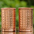 Good quality Stainless Steel Copper Tumbler &Beer Glass