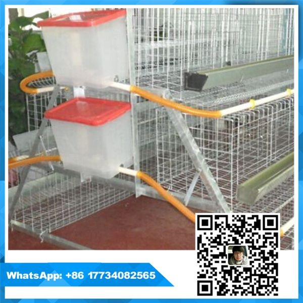 Alibaba china supplier battery used poultry cages for sale/for laying hens sheds/chicken cage ( whatsapp +86 17734082565)