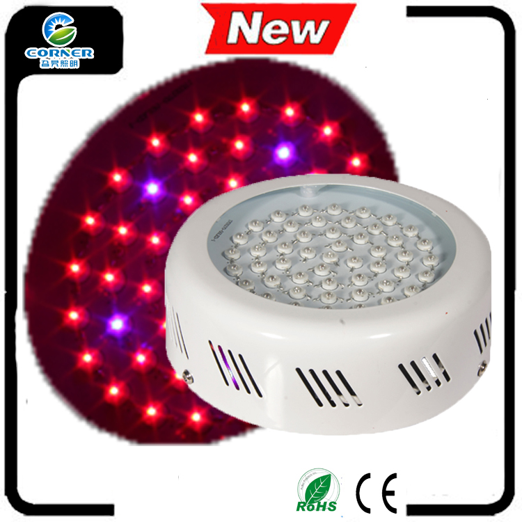 Indoor Garden for Plant Growth high power 50w growing led lights