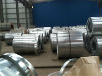 China Galvanized Hot Dipped Steel Coil SGCC DX51D ASTM A653 JIS G3302 with color coated distributor Galvanized Hot Dipped Steel