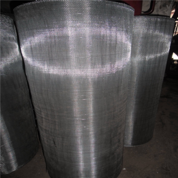 SS 304 Wire Mesh/ Window Screen