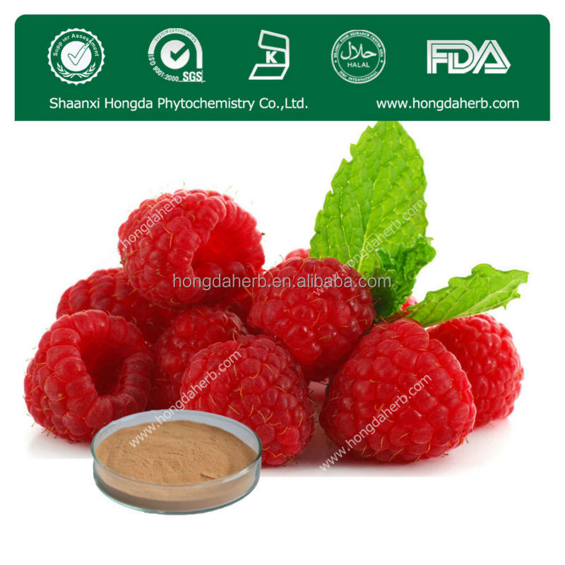 Natural herbal extract Cranberry Extract powder/cranberry fruit P.E.