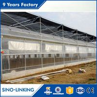 Industrial Hydroponic Commercial Multi Span Greenhouse