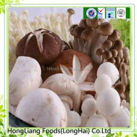 Canned button mushroom with new crop