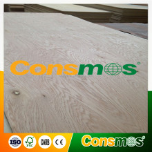 R/C Natural Oak Plywood with poplar core for USA market