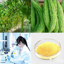 Manufactuer supply Bitter Melon Extract Powder 20%-50% Total Saponins KOSHER HALA HACCP