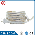 LED 110V 220V SMD5050 waterproof led strip lighting flexible led strip
