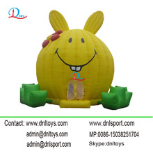 CE and EN71 Professional 0.55mm PVC Inflatable jumping bounce house