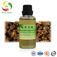 100% pure natural herbal oil notopterygium oil for sale