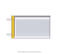 Rechargeable Lithium Ion Polymer Battery 3