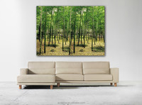 Bamboo Forest of Poster, Decoration posters, Bamboo wallpapers