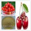 Pure Natural Acerola Cherry Extract