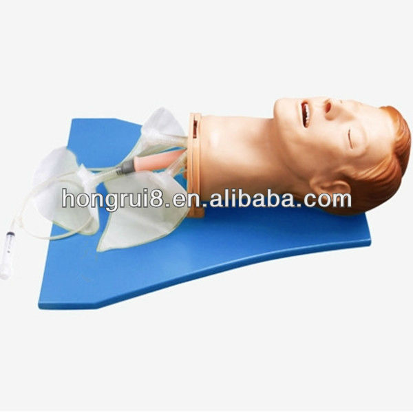 ISO Multi-functional Adult Intubation Manikin, Airway Intubation Trainer