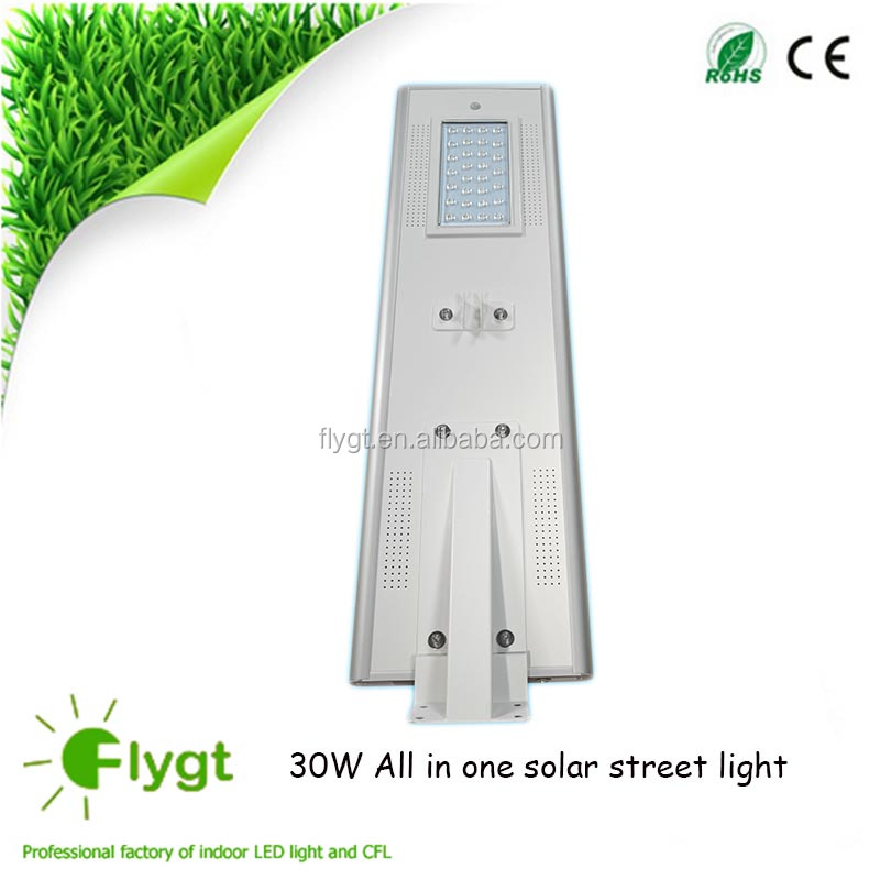 solar power umbrella light solar flame light china solar led light