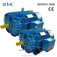 NEMA Premium efficient induction electric motors made in China