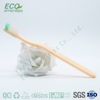 hotel supplier cheap disposable toothbrush with toothpaste is toothbrush