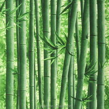 Visual 3d classical Chinese style bamboo wallpaper for restaurant/living room/tv background