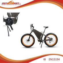 Ce En15194 wide tyre 1KW power Electric Bicycle mtb E-Bike
