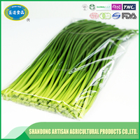 Garlic sprout supplier,exporter,seller,good faith factory