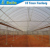 Hot galvanized pipe tube plastic greenhouses for sale