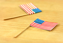 High Quality Fancy Birch Wooden Toothpick With National Flag