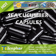 Best Selling Anti Cancer OEM Sea Cucumber Extract Essence Hard Capsule