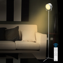 Hot Sale Photography Studio Light Led Brightness Dimmable Led Floor Standing Lamps Energy Saving Lamp Decorative Floor Lamp