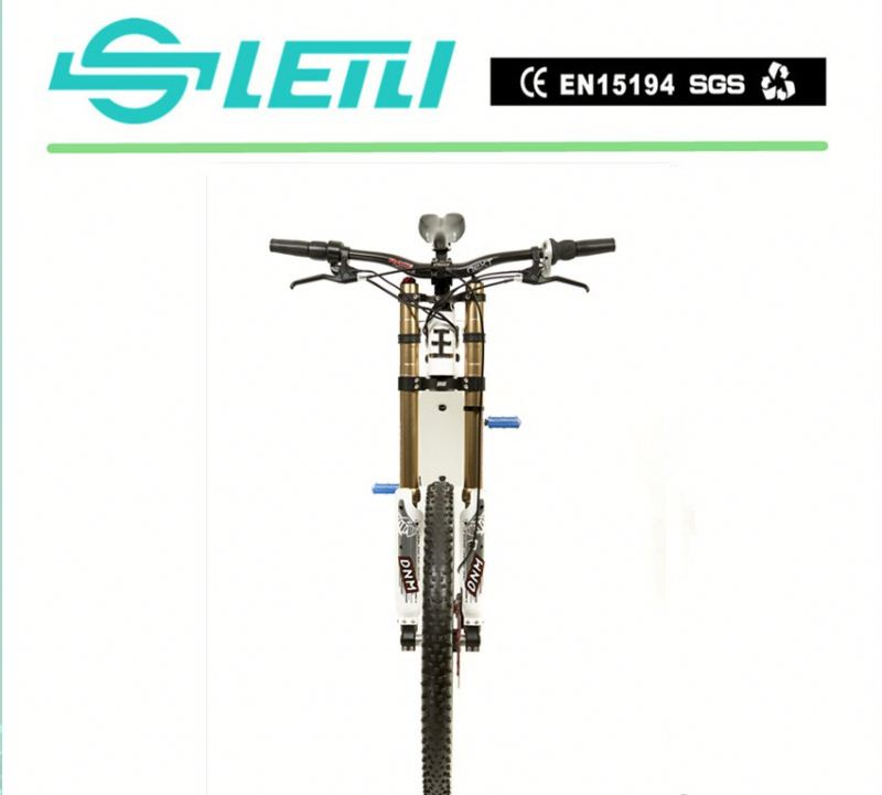 Diy 48v 500w electric mountain bicycle 500w rear motorbike for sale