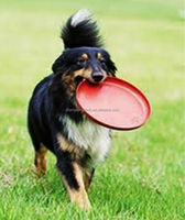 Dog toy light weight plastic frisbee
