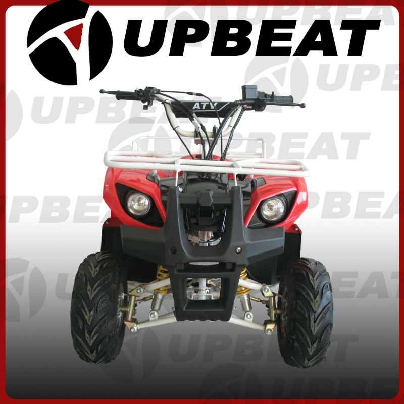 CE Mini Utility 50cc/110cc/125cc Quad Bike Automatic ATV