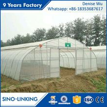 SINOLINKING Agricultural polytunnel 8m tunnel greenhouse guangzhou comercial greenhouse