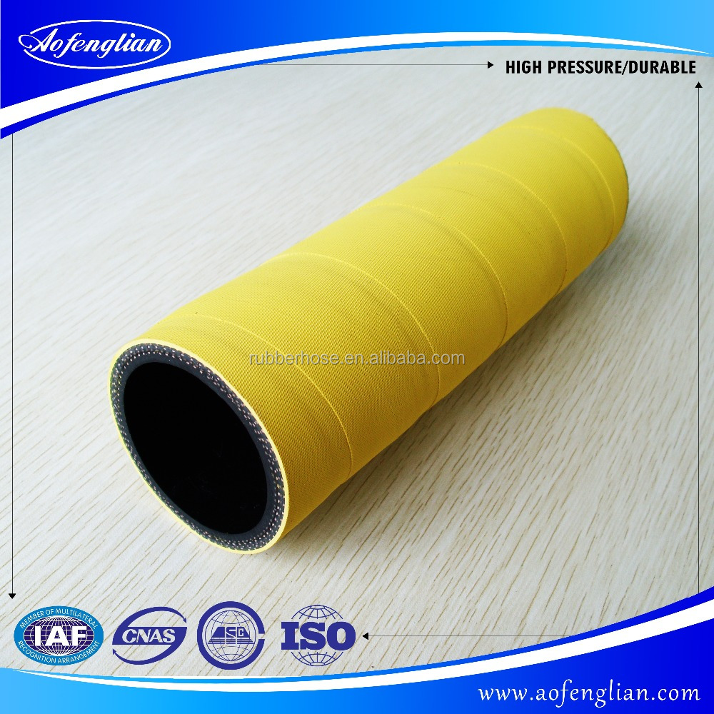 100 feet air water hose