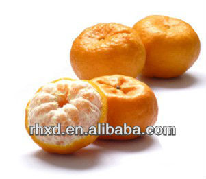 Citrus Quince Fruits ponkan orange