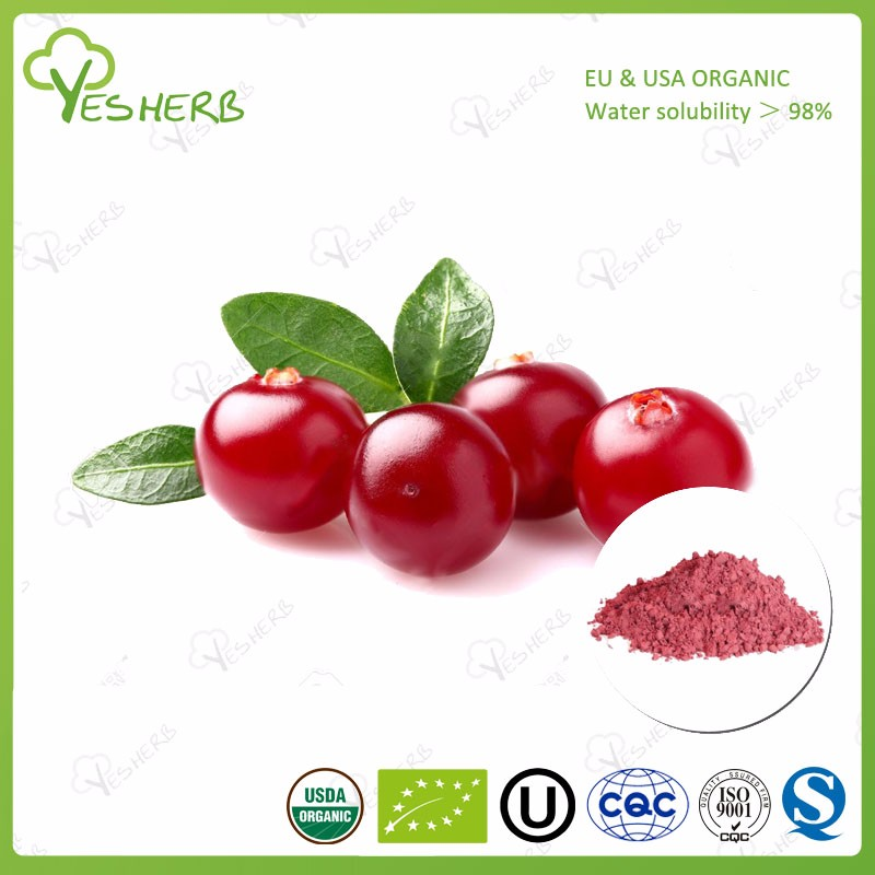 YesHerb supply cranberry juice concentrate powder