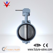 Cast Iron JIS 10K Worm Gear Butterfly Valve