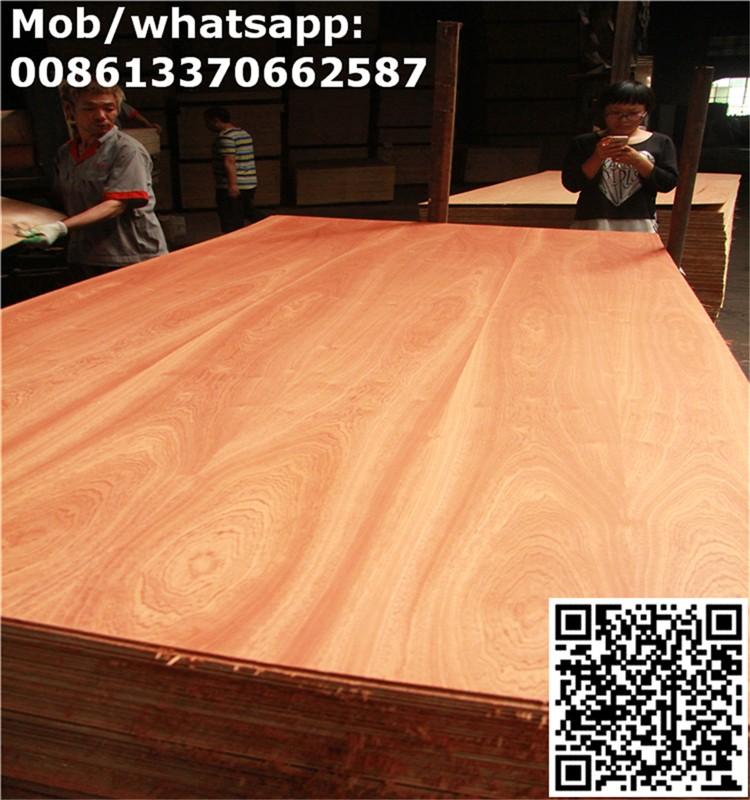 Cheap Price Sapele Fancy Plywood Wood Veener Door Skin