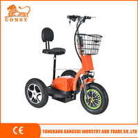 500W 48V 20AH three wheel ckd electric scooter ES04D