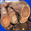 Cameroon and Ghana wood logs doussie tali logs