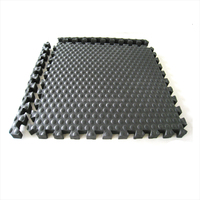 Hot Sale Thick Cheap Price Black Rubber/EVA Horse Stall Mats For Gym