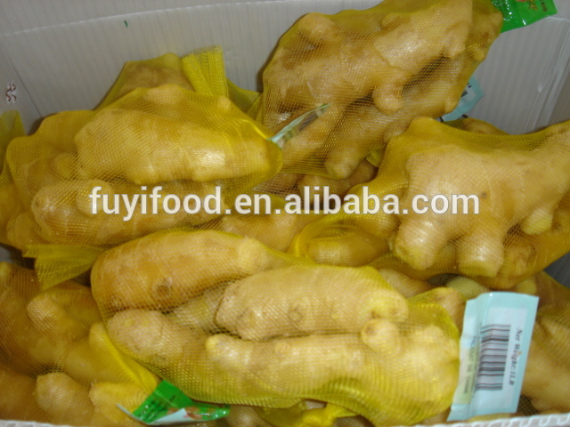 Good taste Fresh Ginger for exporting