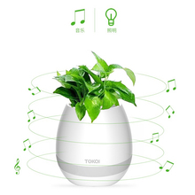 Hydroponic Heart Shoe Shaped Rechargeable speaker Flower Pot