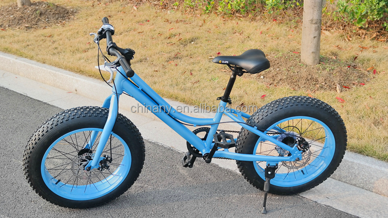 20 inch fat tire bike bicycle / beach cruiser snow bike