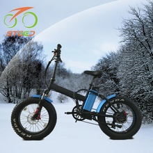 48v battery el bike fat bike for OEM