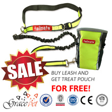 STOCK SALE - HANDS FREE DOG RUNNING LEASH + FREE TREAT POUCH!