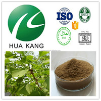 GMP factory provide Gingko biloba leaf extract,ginkgo biloba reviews,Top Quality 100% Natural New Gingko Biloba Extract