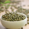 China Origin different size sprouting green mung beans