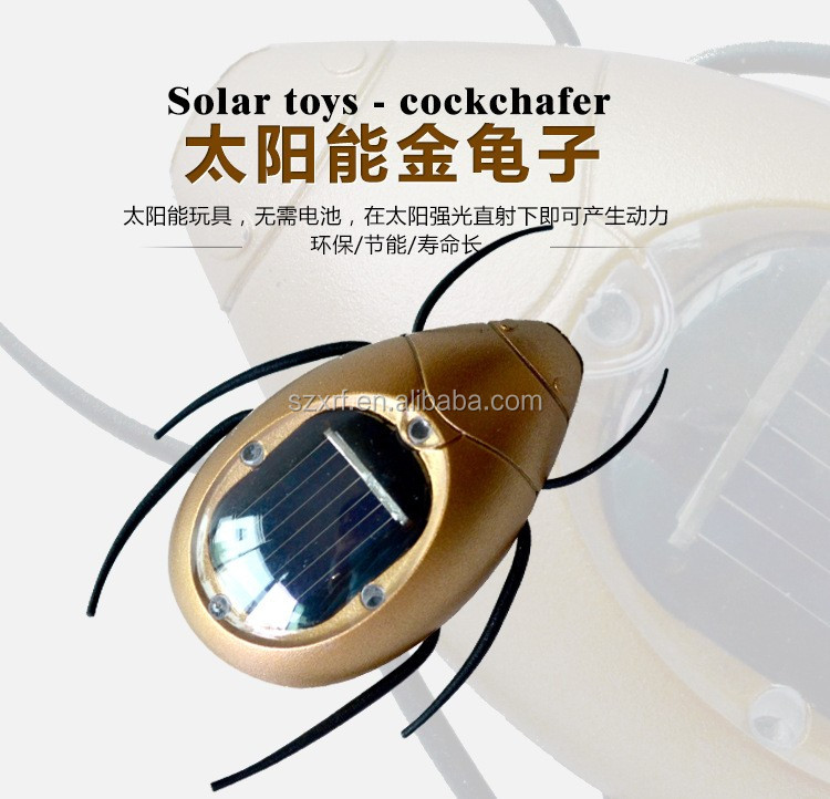 New Fashion Patent Cute Gift Solar Scarab