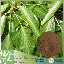 Healthcare Product Total Saponins 10% Chinese Ivy Stem Extract