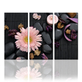 3 Pieces Canvas Wall Art Flower Zen Stone Spa Art Design Canvas Print For Home Living Room Decorations